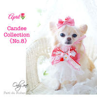 Candee collection《No.8》