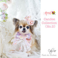 Candee collection《No.3》