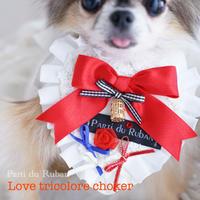 Love tricolore  Ruban's Heart