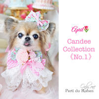 Candee collection 《No.1》