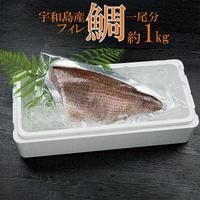 宇和島産 伊達真鯛フィレ 1尾分 約1kg