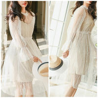 透け感で大人キュートなフェアリーワンピースドレス