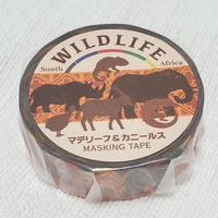 アフリカンマステ「WILD LIFE」