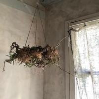 """Birds nest hanging wreath""""Mozu""""(バーズネスト ハンギングリース""""モズ"""")"""