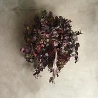 Colored Eucalyptus & Hydrangea Wreath (染めユーカリとミナヅキのドライリース)