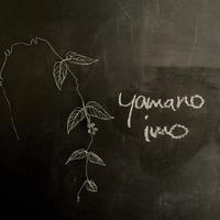 yama-noimo (ヤマノイモ)