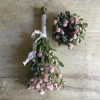 "Dried Sen-Nichi-Ko Mini Wreath & Swag""Pink""(桃色の千日紅のミニリース&スワッグ)"