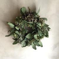 Autumn Hydrangea  & Eucalyptus Wreath (秋色紫陽花とユーカリのドライリース)
