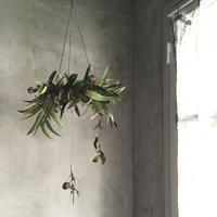 Hanging  Eucalyptus Wreath (ユーカリのハンギングリース)
