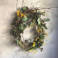 Mimosa oval wreath (ミモザのオーバルリース)