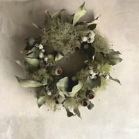 Dried Eucalyptus & Smoke Tree Wreath (ユーカリとスモークツリーのリース)