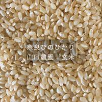 奈良ひのひかり 山口農園 玄米 5kg(農薬・化学肥料不使用)