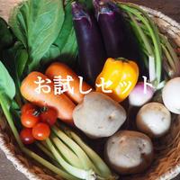 旬のお野菜セット(お試し1回分)送料別途