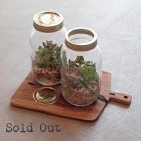 Botanical Jars ボタニカルジャーポット