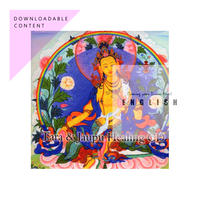 [English Digital Distribution] MP3 ZIP FILE : TARA & JAUPU HEALING CD - Meditation CD ($10)