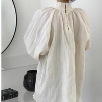 【予約販売】pleats fancy blouse