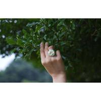 DROOM / 瞑する指輪 3-Color