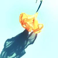 むくり  /  一輪の花ピアス ORANGE