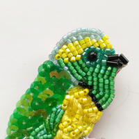 吉丸 睦 / 世界の鳥ビーズブローチ14 アオボウシミドリフウキンチョウ|コスタリカ