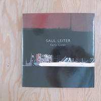 SAUL LEITER    NEW COLOR