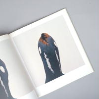 bird / Roni Horn (ローニ・ホーン)