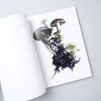 SCANDINAVIAN MUSHROOM / ホンマタカシ(Takashi Homma)