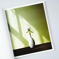 Flowers / Robert Mapplethorpe (ロバート・メイプルソープ)、文:Patti Smith (パティ・スミス)