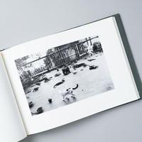 センチメンタルな旅、春の旅 / 荒木経惟(Nobuyoshi Araki)