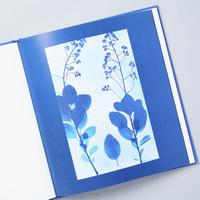 BLUE PRINTS / Zeva Oelbaum (セヴァ・オエルバム)