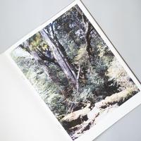 Materia / 上田義彦(Yoshihiko Ueda)