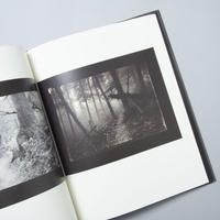 Mionsi Forest  / Josef Sudek(ヨゼフ・スデック)