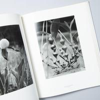 Die Welt der Pflanze / Albert Renger Patzch(アルベルト・レンガー=パッチュ)