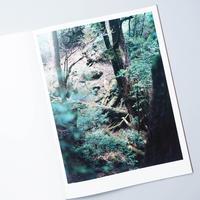 Materia / 上田義彦 (Yoshihiko Ueda)