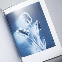 NATURE MORTE / Thomas Ruff(トーマス・ルフ)