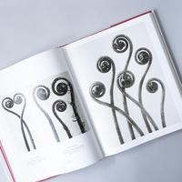 [未開封] The Complete Published Work / Karl Blossfeldt(カール・ブロスフェルト)