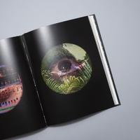 Yanomami L'esprit de la forêt / Davi Kopenawa,  Bruce Albert