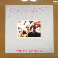 ピーター・グリーン PETER GREEN / 自由へのギター・ロード