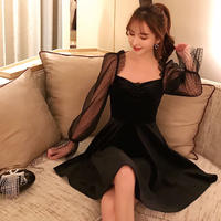 tulle sleeve velour OP(No.300623)