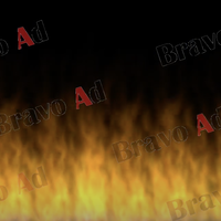 brav-03-00005