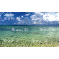 brav-01-00009