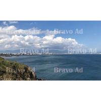 brav-01-00006