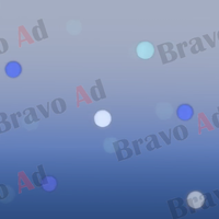 brav-03-00003