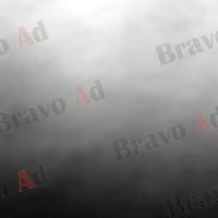 brav-03-00001
