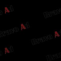brav-03-00004