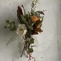 【Dry flower】シースターファンのコンパクトスワッグ