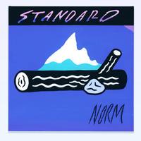 STANDARD NORM_BURNING STICK