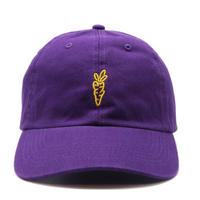 CARROTS SIGNATURE BALL CAP PURPLE