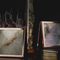 VENUS MARBLE油絵シリーズ・9色アイシャドウパレット