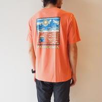 Patagonia (パタゴニア) / メンズ・サミット・ロード・オーガニック・Tシャツ