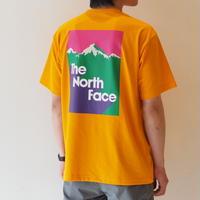THE NORTH FACE (ザ ノースフェイス) /  Snow mountain Tee (スノーマウンテンティー)